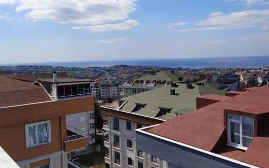 Furnished duplex for sale in Istanbul