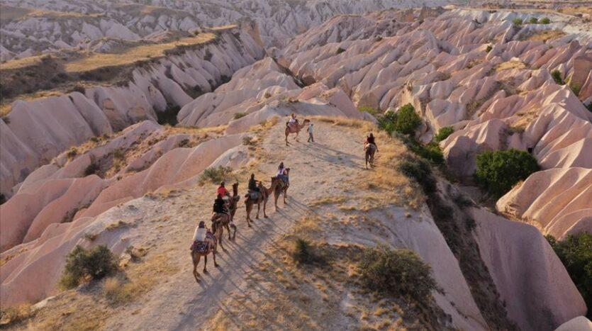 Camel caravans in Cappadocia